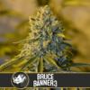 Bruce Banner #3 Feminizovaná