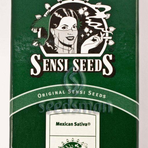 Mexican Sativa Regulérní