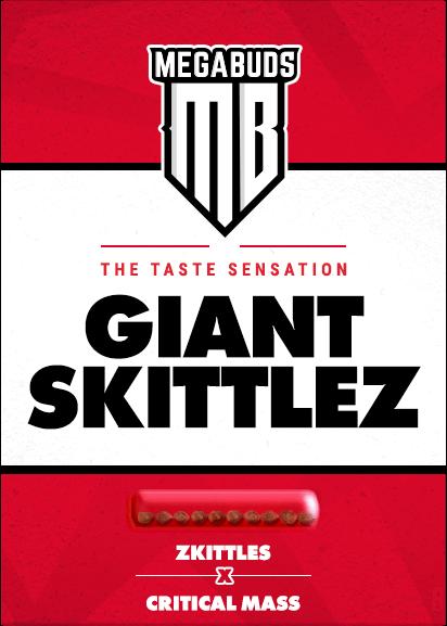 giant-skittlez-pack