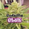 Godzilla Glue Feminizovaná