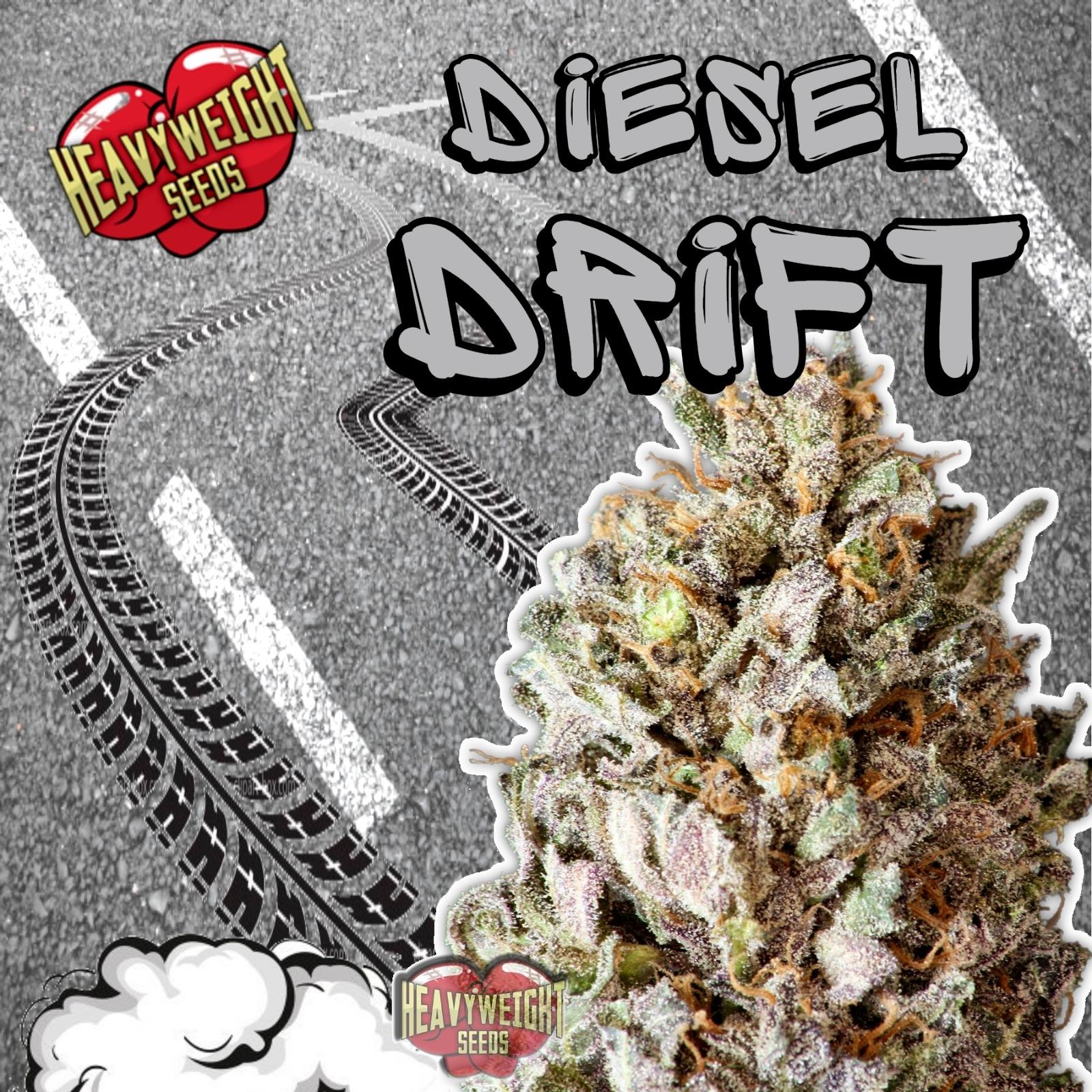 Diesel Drift Feminizovaná