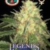 Legends Gold Feminised Seeds