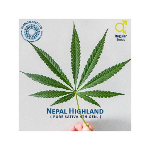 nepal-highland-leaf