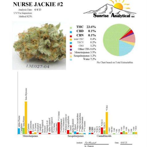 nurse_jackie_2_