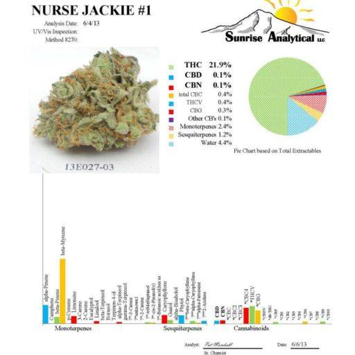 Nurse Jackie Regulérní