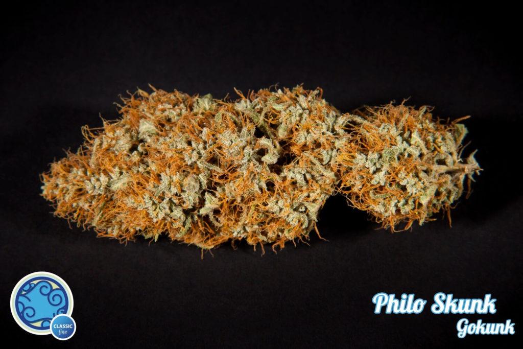 philo-skunk
