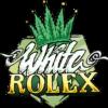 The White OG Feminised Seeds