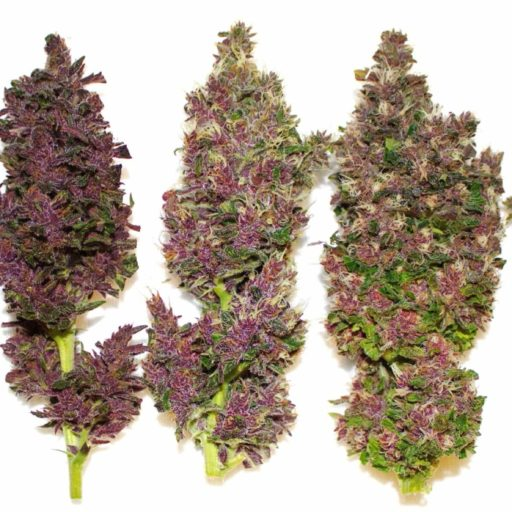 smooth-smoke-buds