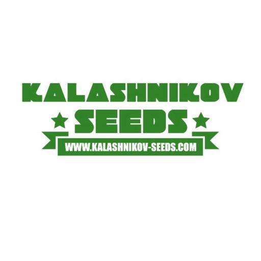 AK Kush Feminizovaná