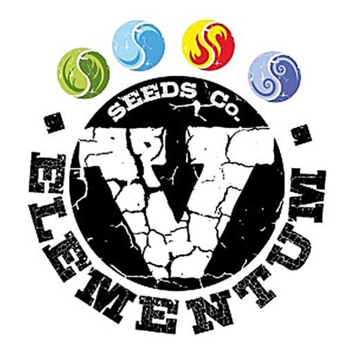 v-elementum-seeds