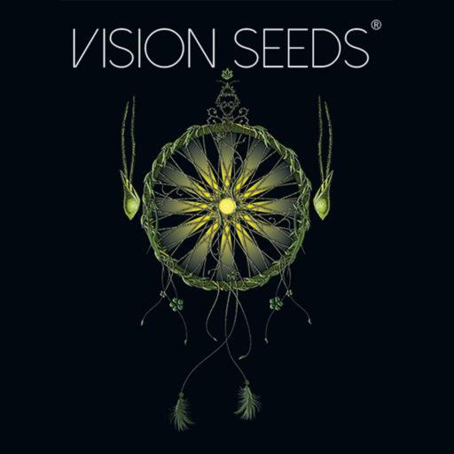 vision-seeds