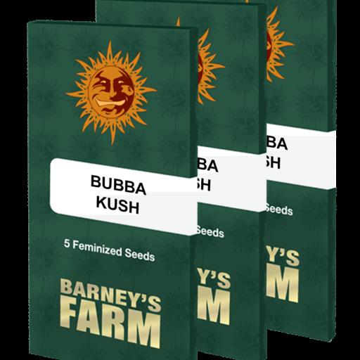 bubba-kush-2